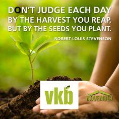 Farm, quote, wisdom, farmer, boer, plaas