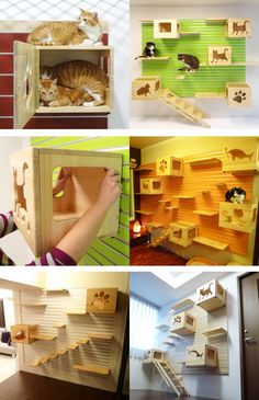 Catswall - Super Cute Modular Cat Climbing Wall For Pets--shows how it's installed and adjustable.