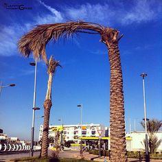 Chlef - algerie