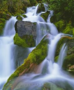 Nature Flowing Water Waterfall Moss | Photo, Information