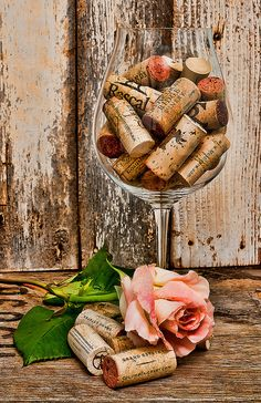 Wine And Roses | Flickr - Photo Sharing!