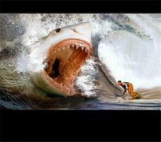 This is why I will never go In the ocean.