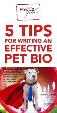Do you write for your local rescue group? Here are 5 tips for writing an effective pet bio from the HeARTs Speak blog.: