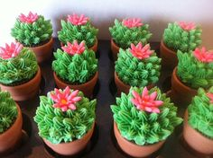 Looks like a perfect cactus flower cupcake :-)
