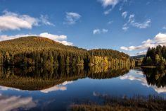 Lake of Sösetal, Harz Mountains - Harz, Germany - Besuche diesen und weitere schöne Ort mit Hilfe unserer kostenlosen Harz-App von Das Örtliche! www.harz-app.de