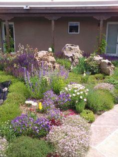 teich rasen und weiden im vorgarten beim hauseingang garten pinterest hauseingang rasen. Black Bedroom Furniture Sets. Home Design Ideas