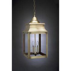 Northeast Lantern Concord 3 Light Outdoor Hanging Lantern Finish: Antique Copper, Shade Type: Clear Seedy