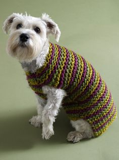 5 free dog sweater knitting patterns - on the LoveKnitting blog! #DogSweater