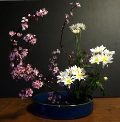 ohara ikebana moribana - water reflecting