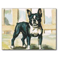 >>>Order          	French Bulldog Postcards           	French Bulldog Postcards In our offer link above you will seeHow to          	French Bulldog Postcards Here a great deal...Cleck link More >>> http://www.zazzle.com/french_bulldog_postcards-239364464047324778?rf=238627982471231924&zbar=1&tc=terrest