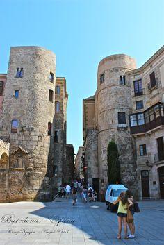 Barri Gotic, Plaça de la Catedral. Barcelona - España
