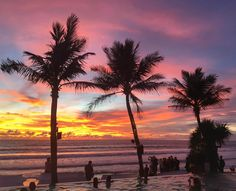 This Bali Travel Guide breaks down what to do, where to eat, and where to stay for the most popular areas of Bali. Click here to read more!