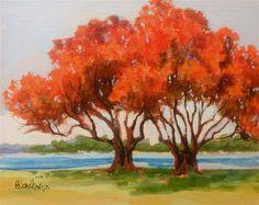 """Royal Poinciana Trees"" by Linda Blondheim"