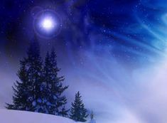 Download Christmas Tree Blue Night Blizzard Wallpaper | Wallpapers.com