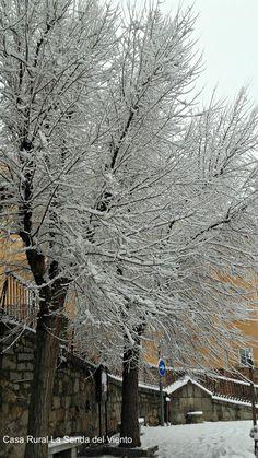 Primera nevada 2017