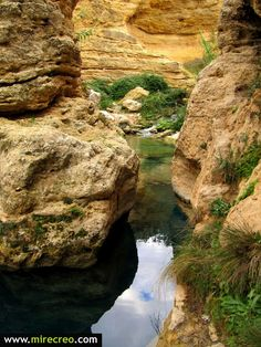 Salto del Usero, Bullas, Murcia   #turismo   #tourism   #murcia   #bullas   #excursiones   #trips   #viajes   #travels   #mirecreo   #cascadas   #waterfalls