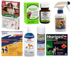 Flea, Tick, Heartworm, Parasite Prevention for Dogs, Cats – What You Should Know Before Putting Your Dog, Cat on Chemical, Pesticide-Based Preventatives and Treatments...
