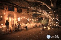 Long table beneath illuminated tree. Fairy lights, Edison lights and white Chiavari chairs www.weditaly.com