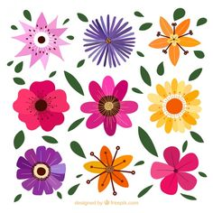 Decorative flowers with different designs Premium Vector Flower Design Images, Flower Designs, Floral Design, Soft Heart, Mandala, Hand Drawn Flowers, Abstract Flowers, Floral Flowers, Floral Wreath