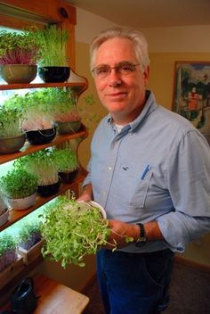 Growing fresh salad greens all year long indoors!! How to Build an Indoor Salad Gardening Shelf