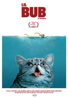 Lil Bub & Friendz - Tráiler | VICE España  (gracias @Nuria Perea)