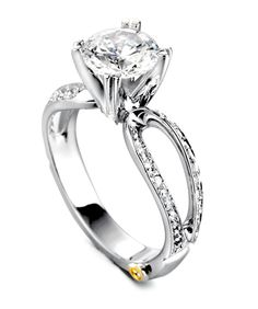 Amore | Engagement Ring | Mark Schneider Design. always loved this ring. though looking at it now, I don't really like the wedding band with it...