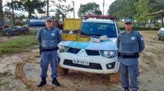 #Polícia: Policia Militar Ambiental apreende materiais de caça na fazenda em Itapetininga