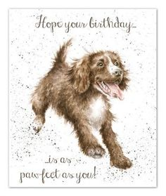 Wrendale Designs by Hannah Dale As Pawfect As You Greeting Card - Set of Three Birthday Congratulations, Birthday Greetings, Birthday Wishes, Happy Birthday, Different Forms Of Art, Wrendale Designs, Watercolor Animals, Watercolour, Animal Sketches