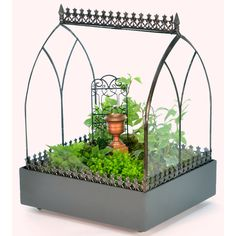 H. Potter Wardian Rectangular Terrarium