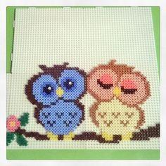 Owls hama perler beads by roxyraider27