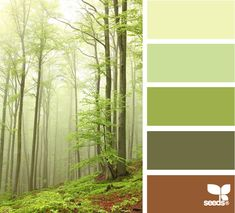 Forest Tones color palette from Design Seeds. I love the shades of green in this one! Hue Color, Colour Pallete, Colour Schemes, Color Combos, Color Palettes, Design Seeds, Forest Color, Color Swatches, Color Theory