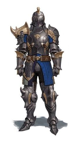 Human Male Knight More