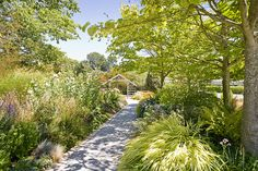 Soest Garden with pathway going to entrance from parking