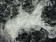 Laurelite, Pb7F12Cl2, Grand Reef Mine, Laurel Canyon, Grand Reef Mountain, Klondyke, Santa Teresa Mts, Aravaipa District, Graham Co., Arizona, USA. Fov 4.5 mm. Copyright: © jo-esche 2014