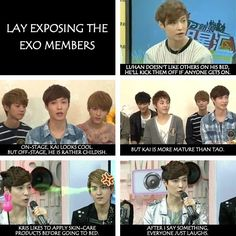 exo lay dishing