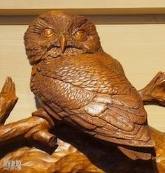 Hand Carved Owl On Carved Mirror by Larry Post Rustics.