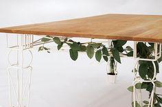 JAILmake Plantable