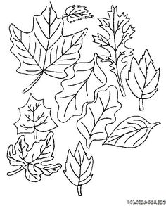 Fall Leaves Coloring Pages . 30 New Fall Leaves Coloring Pages . Fall Coloring Pages for Kids Fall Leaves and Acorn Coloring Fall Leaves Coloring Pages, Leaf Coloring Page, Unique Coloring Pages, Coloring Pages Inspirational, Apple Coloring, Free Printable Coloring Pages, Coloring Pages For Kids, Coloring Sheets, Coloring Book