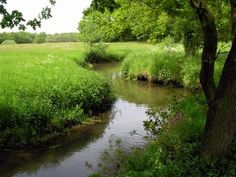 Drentse Aa National Parc, The Netherlands