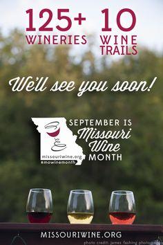 Missouri Wine Month Challenge #MoWineMonth