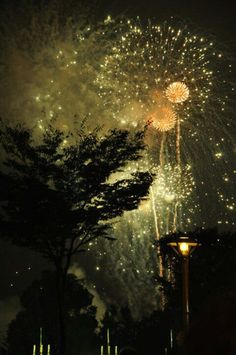 So I've decided that I want fireworks at my wedding. Some day. In the future. Logically.