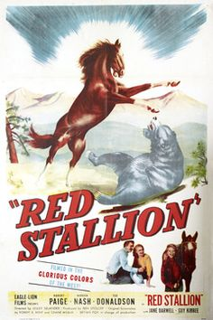 the red pony movie | The Red Stallion (1947): What's That, Lassie? Timmy's Fallen Down ...
