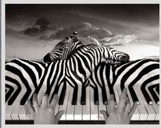 surreal. music + surreal