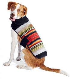 Tails are gonna wag for fleece and cotton dog coats with prints inspired by U.S. National Parks.