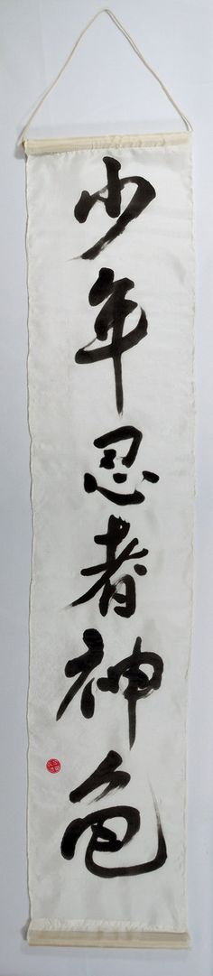 Teenage Mutant Ninja Turtles Chinese Calligraphy by AuspiciousInk