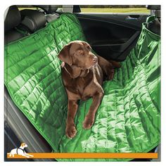This dog hammock for car is waterproof and quilted for your dog's comfort. The Loft Dog Hammock keeps your car seats clean and has a lifetime warranty Dog Hammock For Car, Dog Seat Covers, Dog Car Seats, Loft, Dog Activities, Dog Travel, Furniture Covers, Dog Supplies, Green And Grey