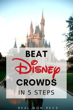 How To Beat Walt Disney World Crowds in 5 Steps! The best tips for managing crowds and lines and in all the Disney parks, including Magic Kingdom. Includes best dates to go according crowd calendar. 2019 and beyond. Disney World Vacation Planning, Walt Disney World Vacations, Disney Planning, Disney World Resorts, Vacation Ideas, Disney Travel, Trip Planning, Disneyland Vacations, Viaje A Disney World