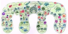 permaculture | permaculture workbook for growing food | the irresistible fleet of ...