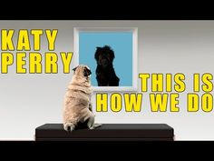 Katy Perry - This Is How We Do (Cute Puppy Version) - YouTube