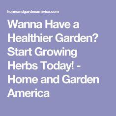 Wanna Have a Healthier Garden? Start Growing Herbs Today! - Home and Garden America
